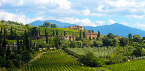 10 Best Wine hotels in Tuscany, Italy | The Hotel Guru