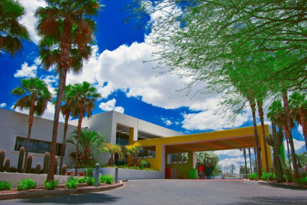 The Saguaro