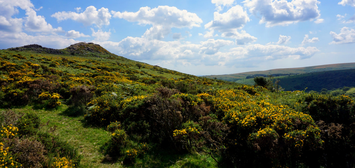 Photo of Dartmoor