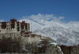 Stok Palace