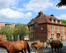 The 7 Best Pubs with Rooms in the New Forest