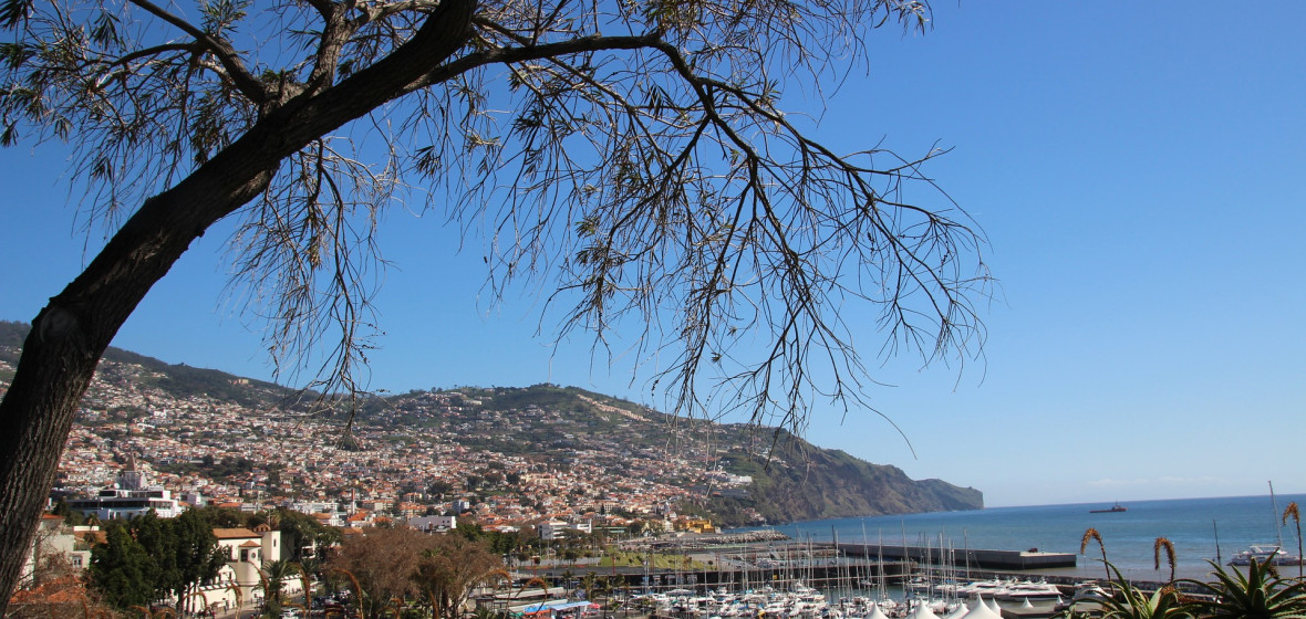 Photo of Funchal