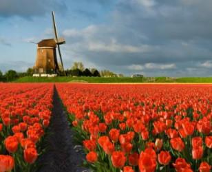 Photo of Netherlands