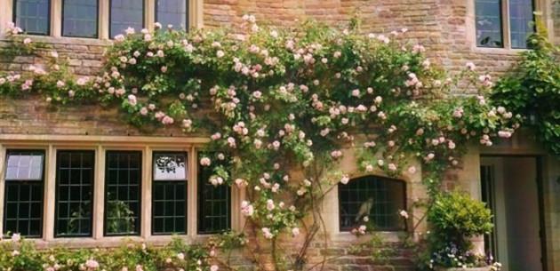 Photo of Plumber Manor