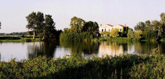 Photo of L'Arbre Rouge