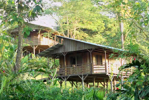 Photo of Selva Bananito Lodge