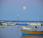 Cape Cod's Best Inns