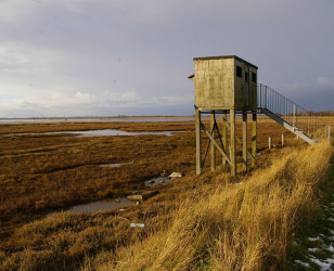 Photo of Norfolk