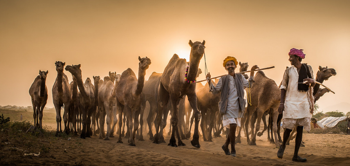Photo of Pushkar