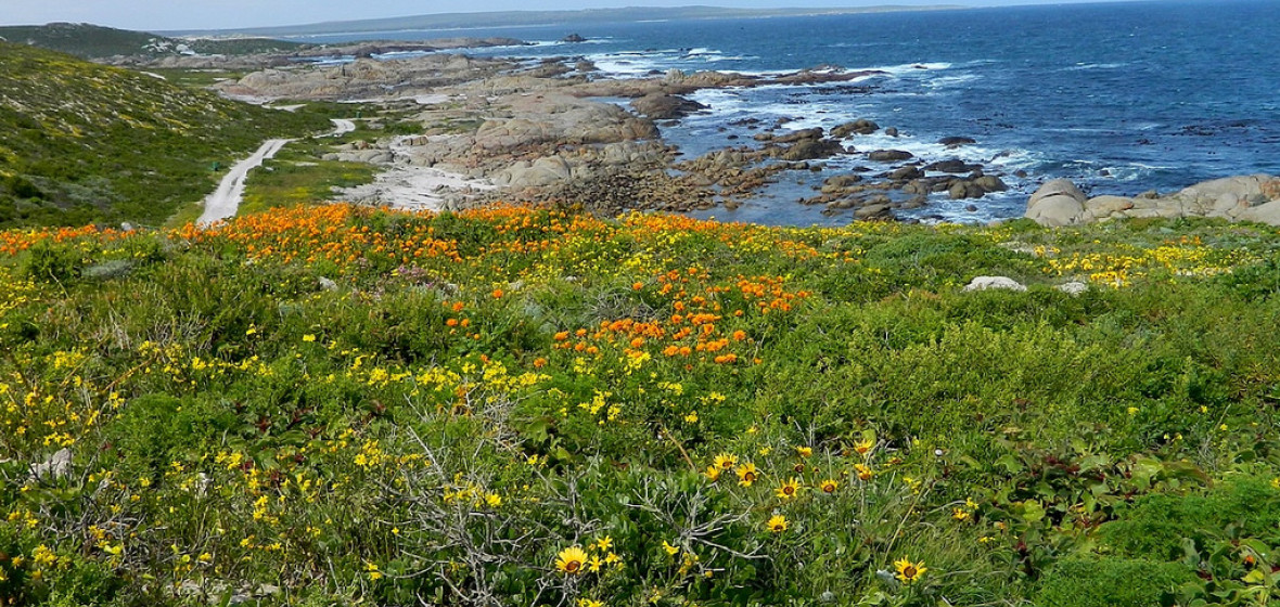 Photo of Paternoster