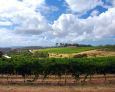 Wine hotels in Margaret River