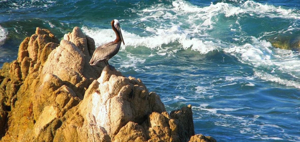 Photo of San Jose del Cabo